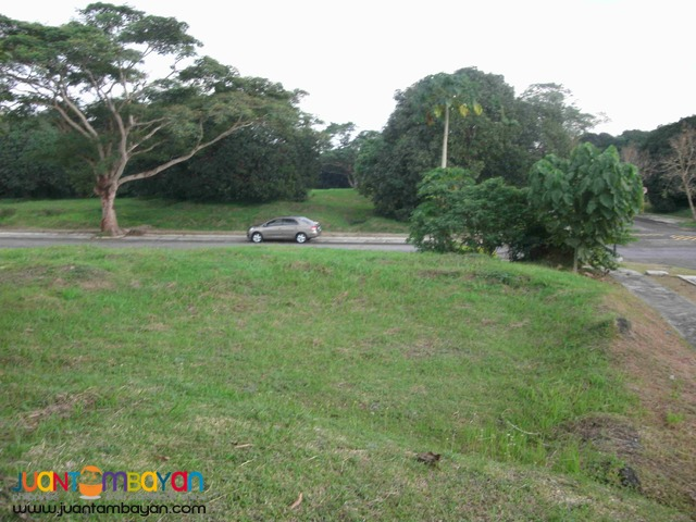 Corner lot for Sale at Ayala Westgrove Heights