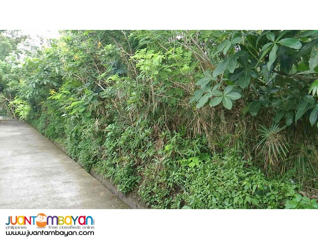 Tagaytay Lot 7500 per sqm for sale few minutes Aguinaldo Hiway