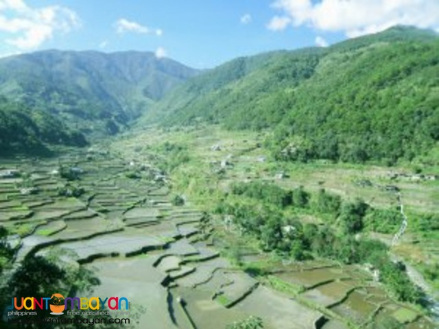 Handcarved and Hand-wooven, Banaue Tour