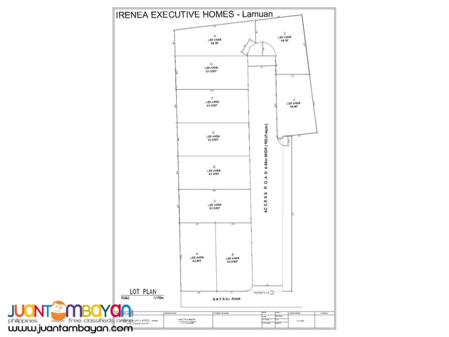 RFO Townhouses at Irenea Homes Lamuan Marikina City