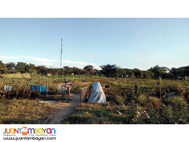 Lot for sale in Mandaue City