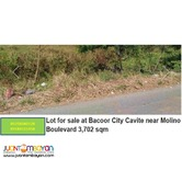 Lot for sale at Bacoor City Cavite near Molino Boulevard 3,702 sqm