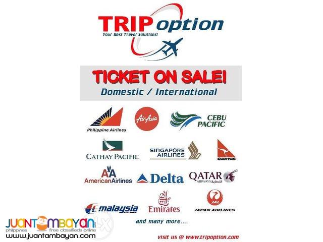 TRIP OPTION More On Traveller  Porpuses