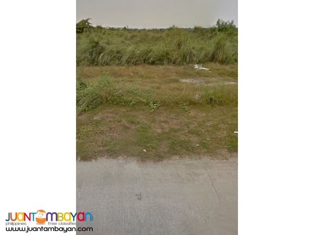Bacao Gen Trias Cavite Lot near CEPZ ( EPZA ) 6000 per sqm
