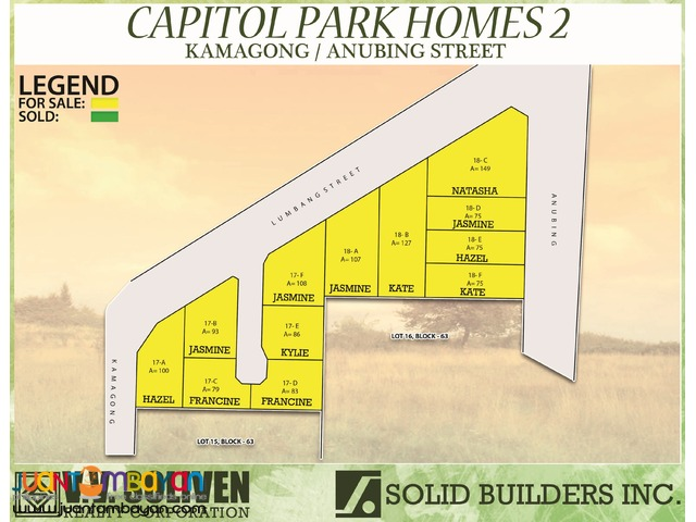 Capitol Park Homes - Kamagong Portion