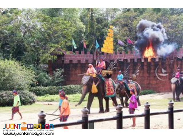 Elephant show, Bangkok tour package