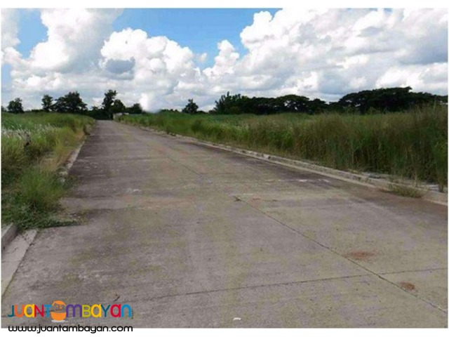 Industrial Lot for sale at Gen Trias Cavite PEZA and Non PEZA