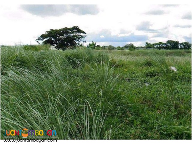 Industrial Lot for sale at Gen Trias Cavite PEZA