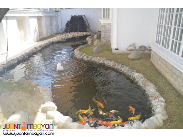 Bungalow with pool and fish pond