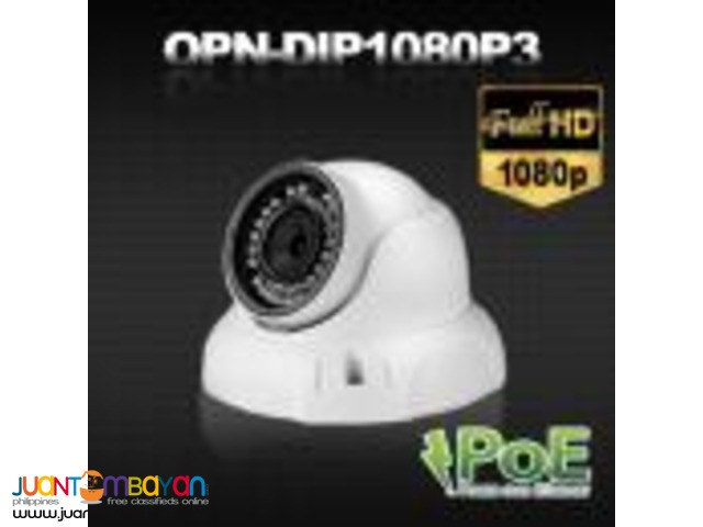 Korean CCTV DIP1080P3 2Megapixel IP Dome Camera