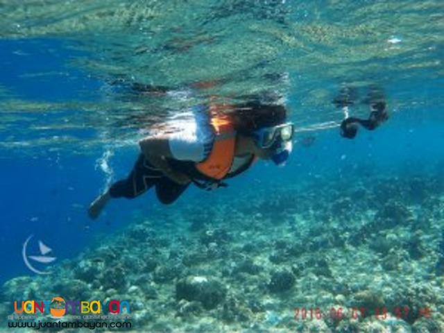 Magnificent Sea Heaven, Bohol tour package