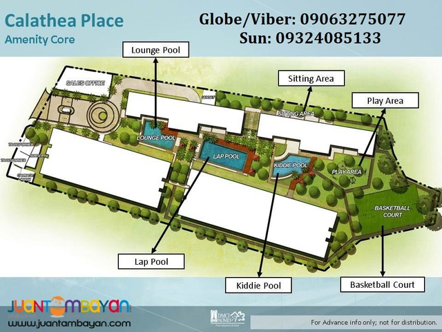 DMCI Calathea Place 1 Bedroom Condo in Sucat Paranaque near SMBF
