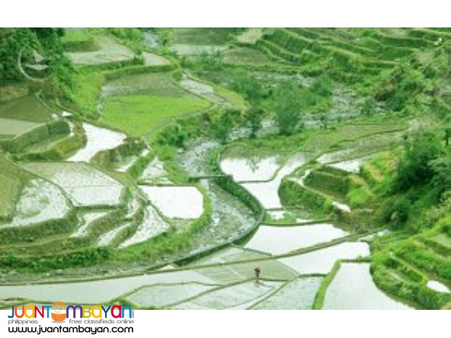 Banaue tour, widely known as UNESCO World Heritage site