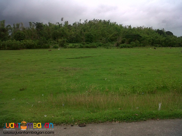PEZA Industrial Lot 2.7 hectares for Sale at Gen Trias City Cavite