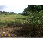 PEZA Industrial Lot 4200 per sqm for Sale at Gen Trias City Cavite