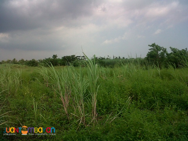 PEZA Industrial Lot 11.4 hectares for Sale at General Trias Cavite
