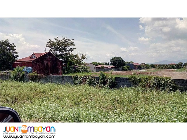 Birmingham Capili Lots for SALE 8,000/sqm only
