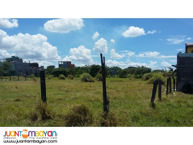 C6 2933sqm vacant land for sale 6M