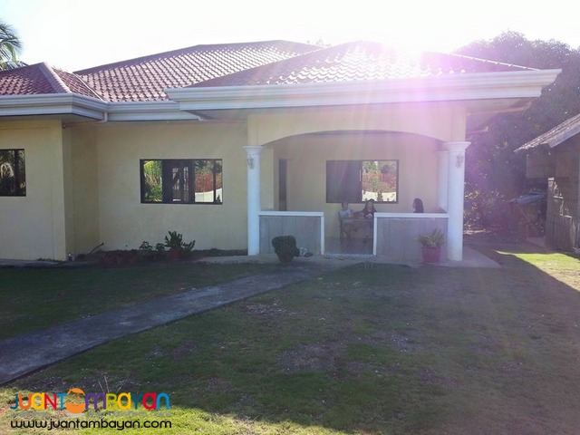 Very Nice Fully Furnished Gated New House
