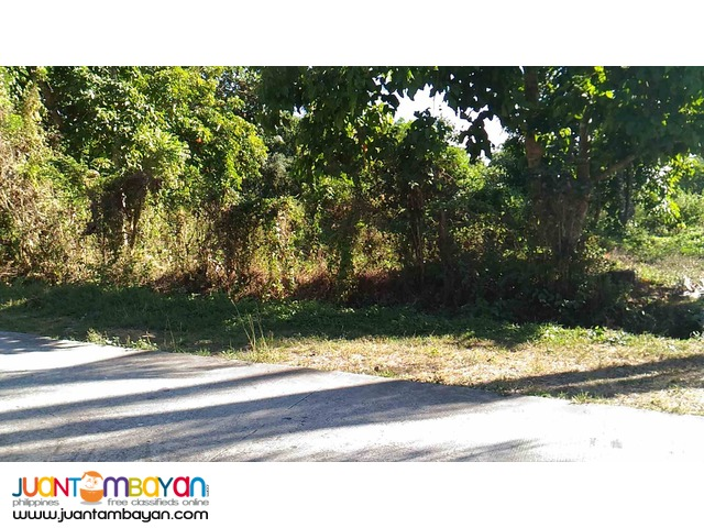 Lot for Sale along National road Amadeo Cavite 2500 per sqm