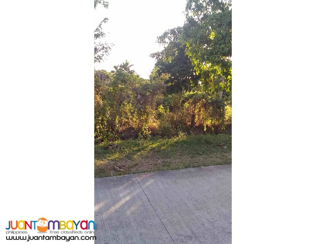 Lot for Sale along National road Amadeo Cavite 1200 per sqm