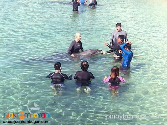 Subic tour package, a fun trip to Zoobic and Ocean Adventure