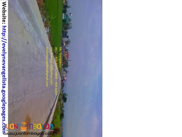 Cainta Greenland Phase 3B @ P 8,800/sqm. Bonifacio Ave.Cainta Rizal