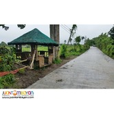 105 sqm Res Lot for only 472 Thou in Mendez Cavite