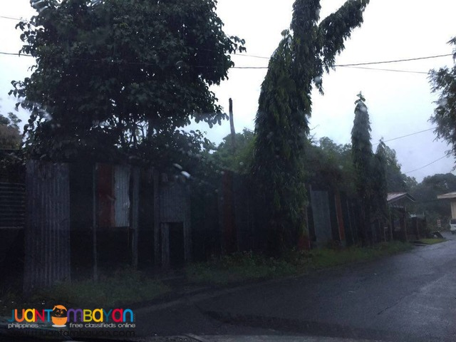 Pilar Village Las Pinas Vacant Lot for Sale 180sqm 2.7M