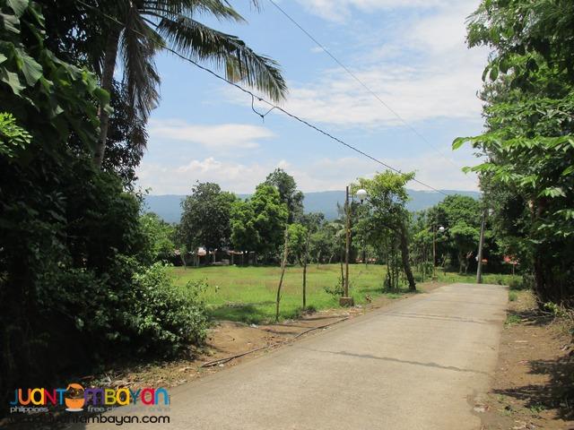 Agricutural Land in Barangay Gonzales, Tanauan City, Batangas