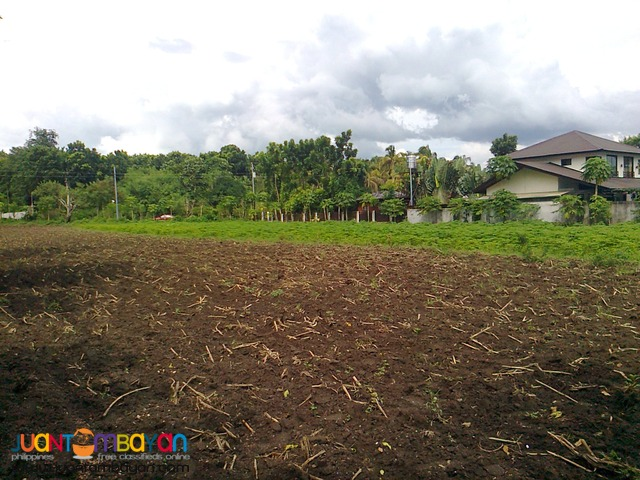Agricultural /Residential Land in Barangay Gonzales, Tanauan, Batangas