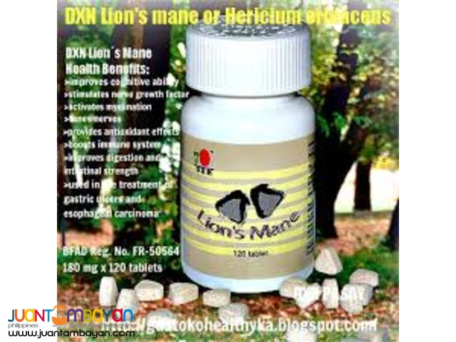 dxn lions mane; best for alzhiemer
