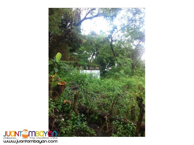 FOR SALE!!! Vacant land in La Vista, Quezon City