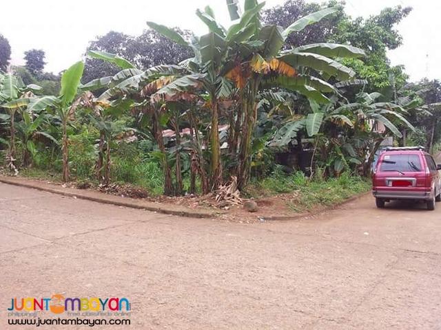 Dela Paz subd.Sumulong Hi-way Antipolo city