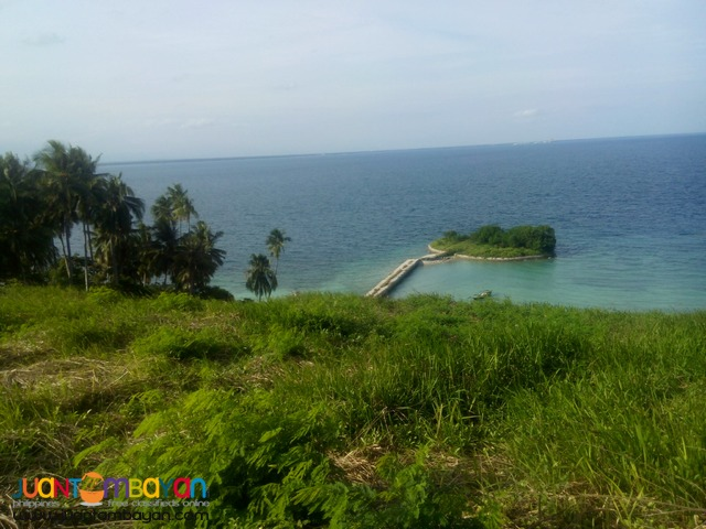 CORNER LOT IN OCEAN VIEW SAMAL ISLAND