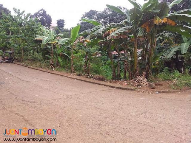 Nuestra Senora Dela Paz subd.Sumulong Hiway Antipolo City 394 SQM LOT