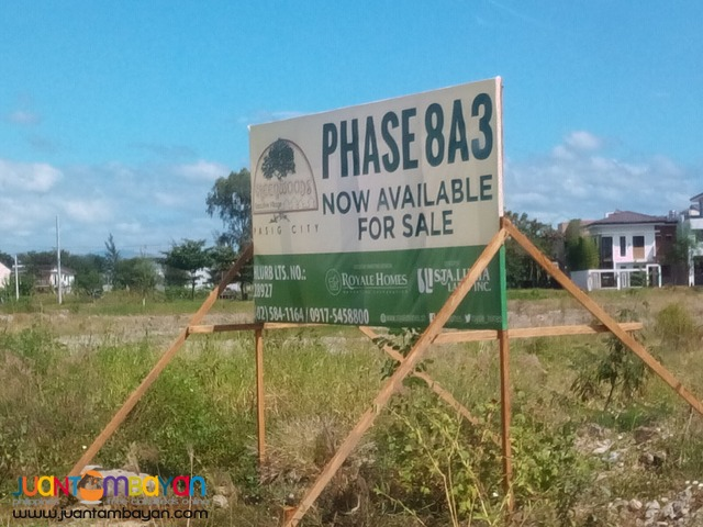 Lot for sale in Pasig - Greenwoods Executive Village Pasig