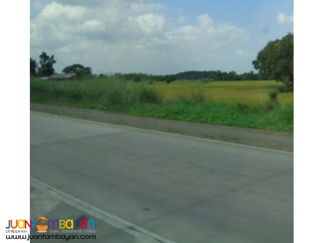 Commercial land in highway Calamba Laguna