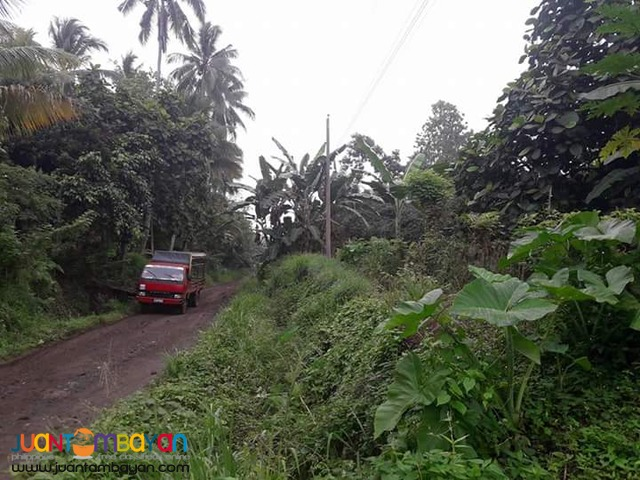 FARM LOT IN TORIL DAVAO CITY