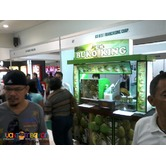 foodcart business food cart franchising buko shake and buko juice