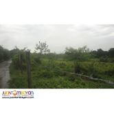 1.8 hectare lot land estate property along Roman Hi-way Abucay Bataan.