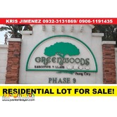 GREENWOODS EXECUTIVE VILLAGE lot in PASIG CITY