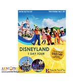 1 DAY - DISNEYLAND LOS ANGELES FREE & EASY PACKAGE