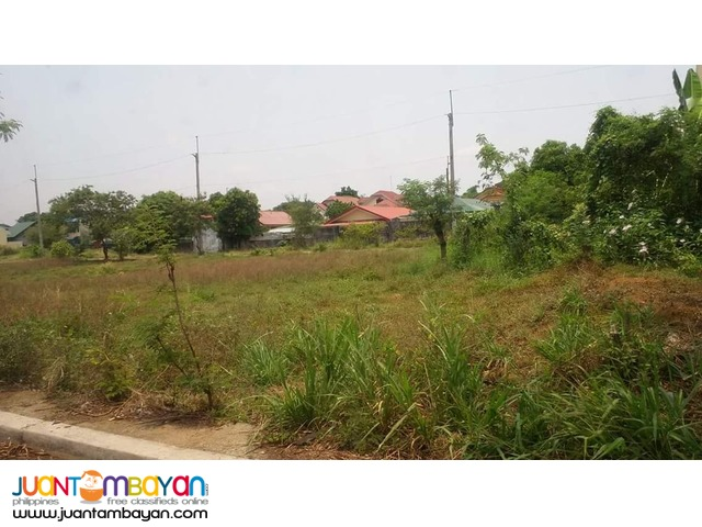 Residential Lot for Sale in Cainta Vista Verde Country Homes