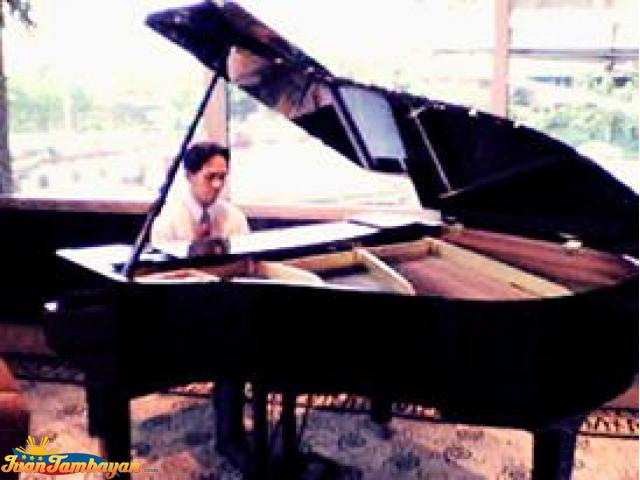 Pianist Instrumentalist