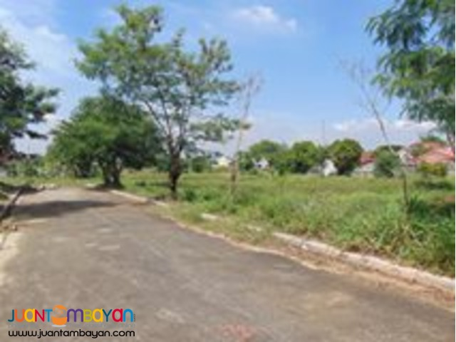 VISTA VERDE RESIDENTIAL LOT FOR SALE NEAR ORTIGAS EXTENSION