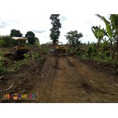 residential farm land for sale in amadeo