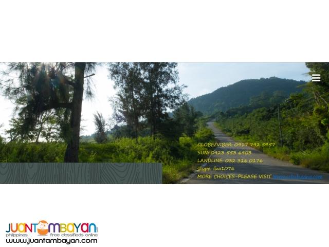 Foressa Mountain Town in Balamban Cebu