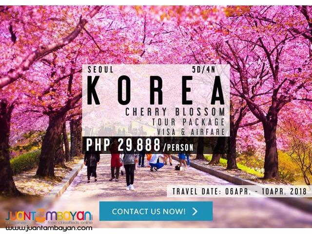 5D4N KOREA CHERRY BLOSSOM TOUR PACKAGE + VISA + AIRFARE