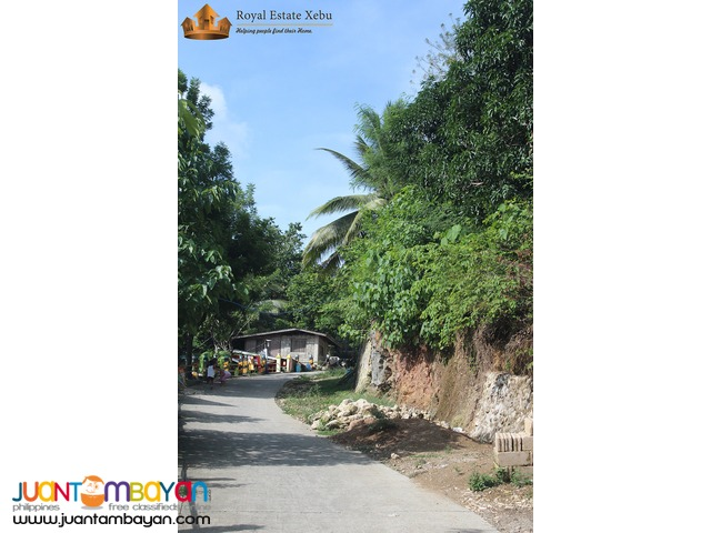 No need for loan: Lot for sale at Penndave Estate Hills in Compostela